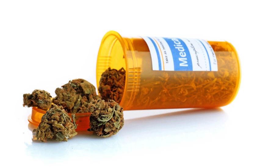 Behälter Dose Cannabis flos
