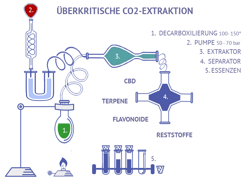 CO2 Extraktion Cannabis Medizin